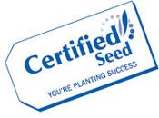 CertifiedSeedLogo_tilt_sm